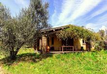 Ferienhaus 1001705 für 5 Personen in Tuscania