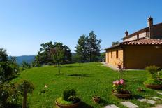 Holiday home 1004674 for 8 persons in Cortona