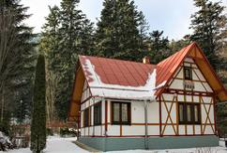 Vakantiehuis 1008339 voor 12 personen in Tatranská Kotlina