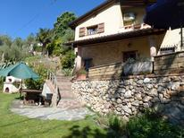 Holiday home 1010199 for 6 persons in Camaiore