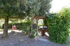 Holiday home 1010460 for 14 persons in Casole d'Elsa