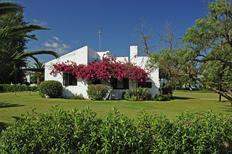 Vakantiehuis 1010584 voor 4 personen in Santa Luzia