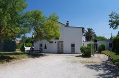 Holiday home 1011033 for 8 persons in Premantura