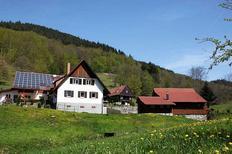 Ferienhaus 1015401 für 5 Personen in Ohlsbach