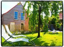Ferienhaus 1020488 für 7 Personen in Ellezelles-Wodecq