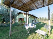 Vakantiehuis 1139056 voor 4 personen in Arezzo