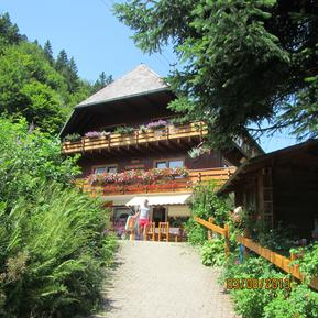 Studio 1139603 for 3 adults + 1 child in Menzenschwand-Hinterdorf
