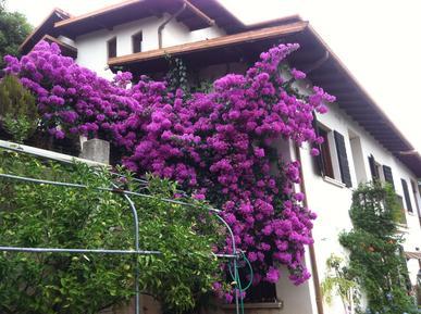 Villa 1155734 per 6 persone in Toscolano-Maderno