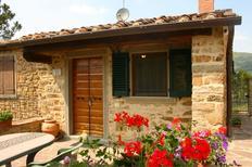 Holiday home 1161808 for 4 persons in Castiglion Fiorentino