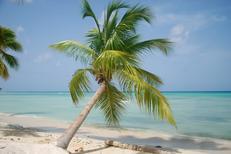 Mieszkanie wakacyjne 1162402 dla 6 osób w Bayahibe
