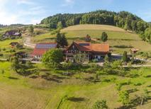 Semesterhus 1168294 för 4 personer i Seebach