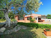 Dom wakacyjny 1186298 dla 4 osoby w Lanuvio