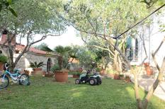 Holiday home 1187412 for 8 persons in Arbanija