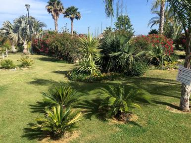 Holiday apartment 1194694 for 6 persons in Vera Playa