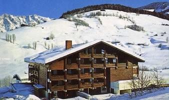 Holiday apartment 1202717 for 4 adults + 1 child in Maria Alm am Steinernen Meer