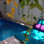 Holiday home 1209940 for 6 persons in Panadrua-Wattalpola