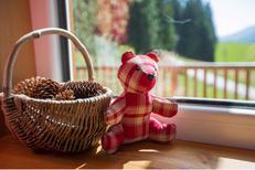 Villa 1240875 per 8 persone in Hohentauern