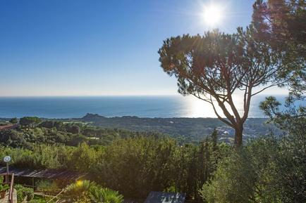 Holiday apartment 1245652 for 4 persons in Castiglione della Pescaia