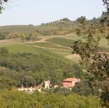 Holiday apartment 1250558 for 5 persons in Castel San Gimignano