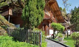 Casa de vacaciones 1279713 para 11 personas en Innertkirchen