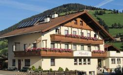 Appartement 1291975 voor 4 personen in Wildschönau-Niederau