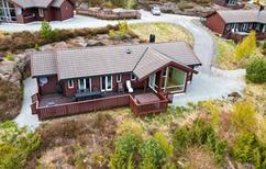 Vakantiehuis 1293972 voor 10 personen in Liarvåg