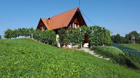 Vakantiehuis 1296755 voor 4 personen in Mirna Peč