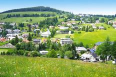Holiday apartment 1308722 for 3 adults + 1 child in Todtnauberg