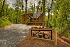 Holiday home 1322429 for 8 persons in Blue Ridge