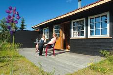 Holiday home 1322601 for 6 persons in Vrådal