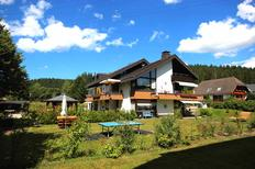 Holiday apartment 1331337 for 3 persons in Schluchsee-Blasiwald