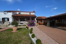 Rekreační byt 1349932 pro 3 osoby v Bale