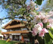 Ferienwohnung 1362850 für 4 Personen in Schliersee