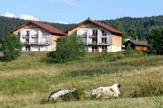 Ferienwohnung 1372507 für 4 Personen in Xonrupt-Longemer