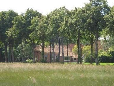 Ferienhaus 157010 für 8 Erwachsene + 4 Kinder in Vriescheloo