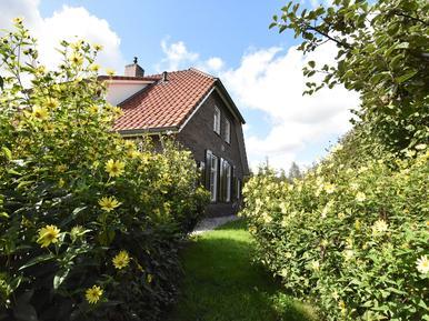 Vakantiehuis 157106 voor 10 personen in Hollandscheveld