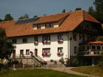 Ferienwohnung 167988 für 4 Personen in Dachsberg (Südschwarzwald)