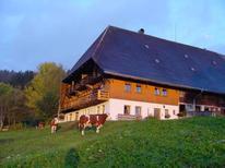 Appartement de vacances 169249 pour 4 personnes , Schonach im Schwarzwald