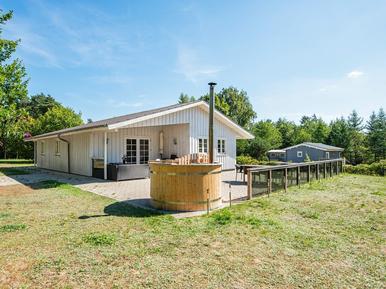Ferienhaus 185310 für 8 Personen in Selkær Møllevej