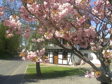 Ferienhaus 204006 für 7 Erwachsene + 1 Kind in Beltheim-Frankweiler