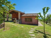 Ferienhaus 218773 für 3 Personen in Castiglion Fiorentino
