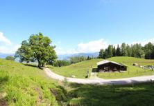 Holiday home 223930 for 6 persons in Dorfgastein