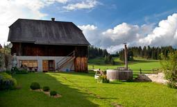 Holiday home 224025 for 4 persons in St. Veit in der Gegend
