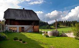 Ferienhaus 224025 für 4 Personen in St. Veit in der Gegend