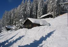 Ferienhaus 349162 für 5 Personen in Präbichl
