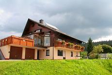Holiday apartment 359033 for 4 persons in Furtwangen im Schwarzwald