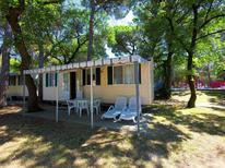 Vakantiehuis 384705 voor 4 personen in Belvedere