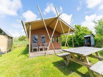 Ferienhaus 402897 für 5 Personen in Callantsoog