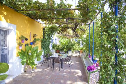 Holiday home 481351 for 10 persons in Pizarra