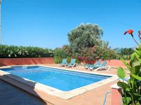 Holiday home 49578 for 6 persons in Alcúdia
